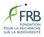 FRB_rvb
